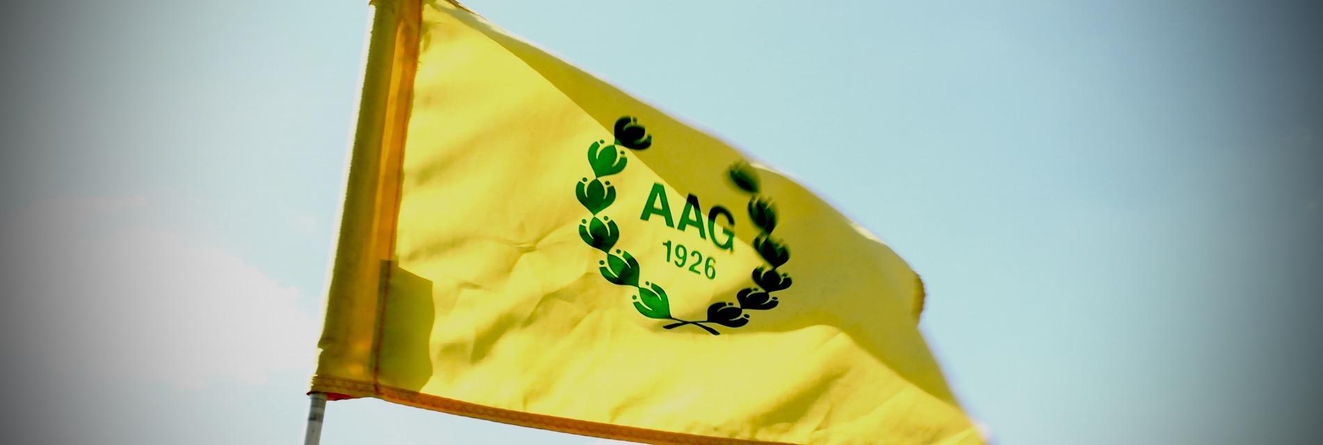 bandera aag (1)